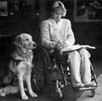 Woman in a wheelchair with her helping dog